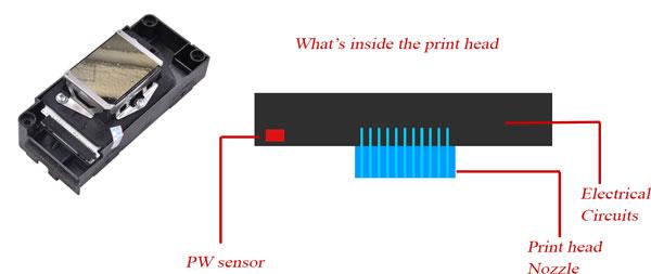 print head circuit